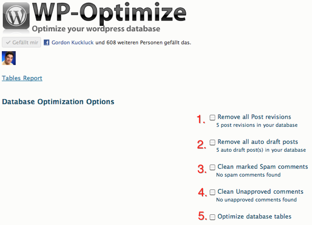 WP-Optimize Optionen